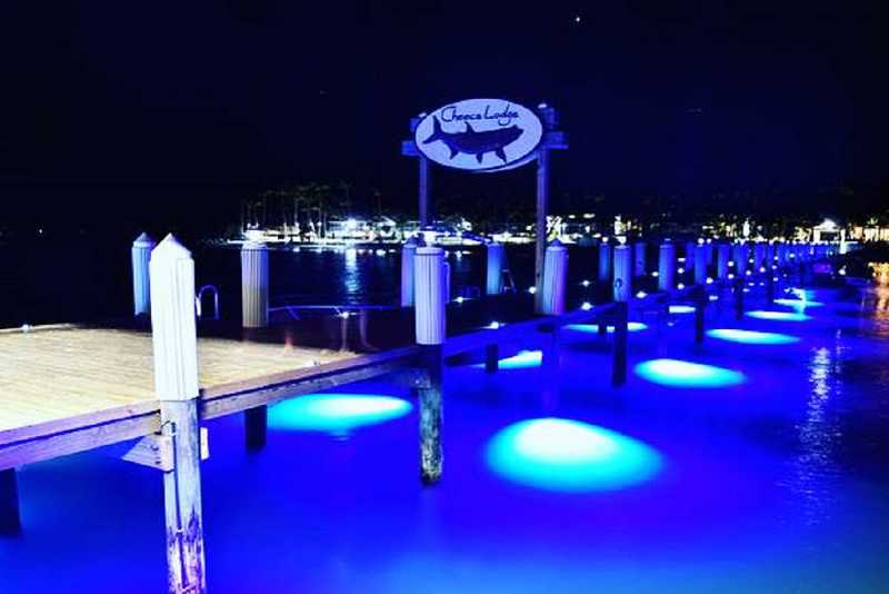 Bluefin LED Docklights. Cheeca Lodge Florida Keys